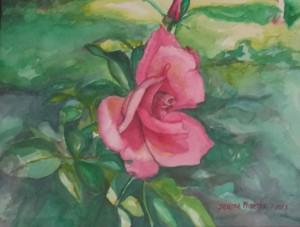 """""""Pink Rose"""""""
